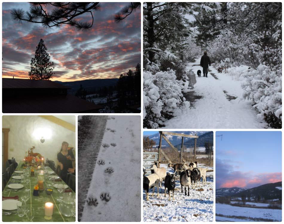 WinterPathW